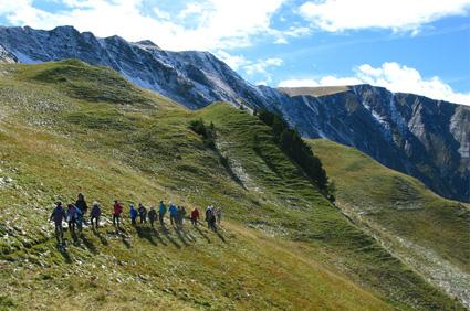 randonnée pedestre facile à l'alpe du grand serre - taillefer
